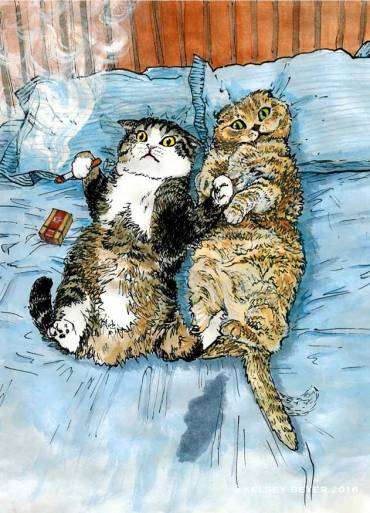 cats-bed_crop_w_wm